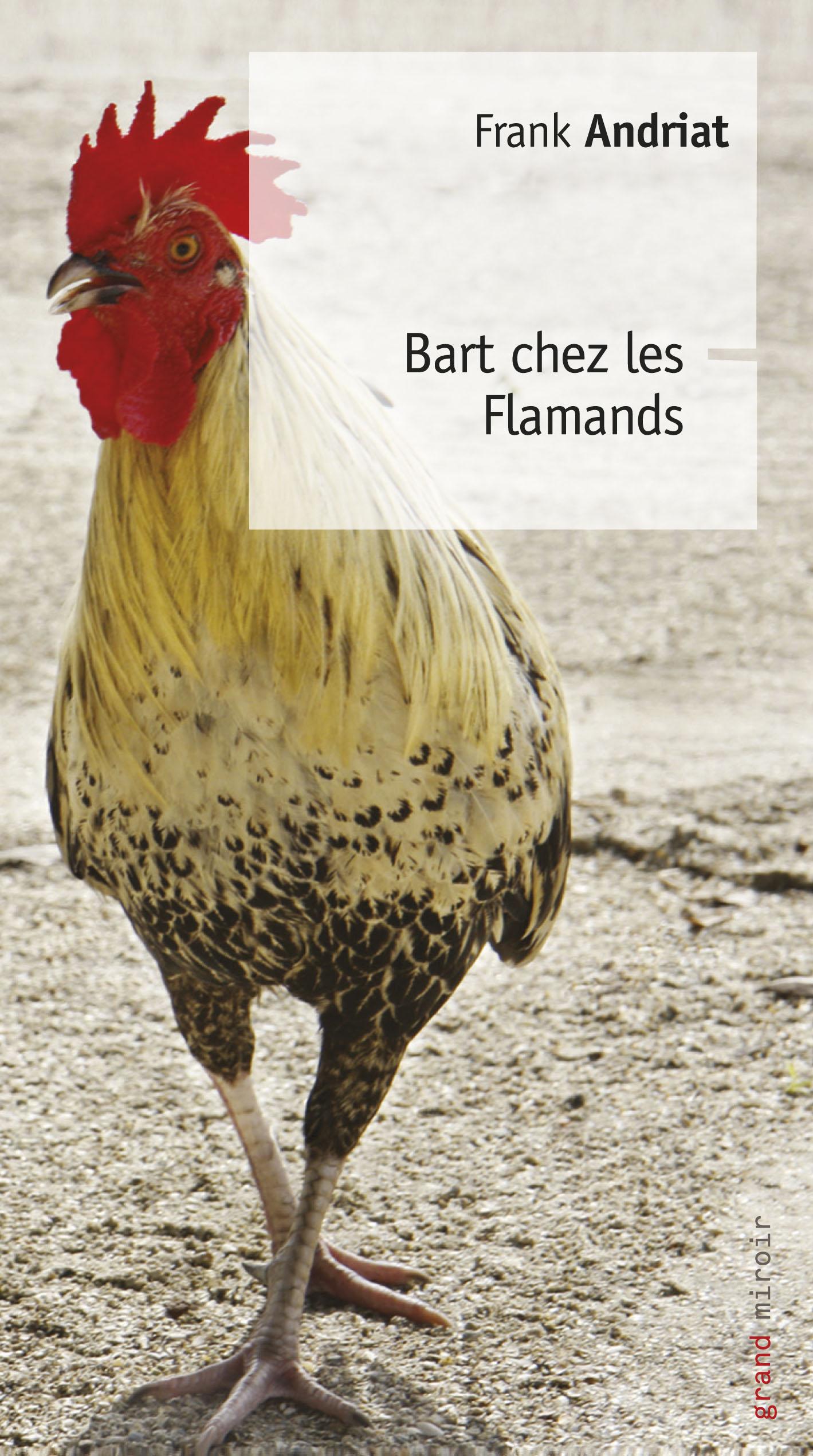 Bart chez les Flamands